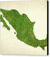 Mexico Grass Map Canvas Print by Aged Pixel