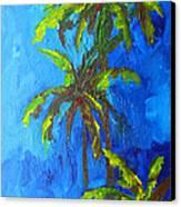 Miami Beach Palm Trees In A Blue Sky Canvas Print by Patricia Awapara