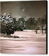 Midnight Stillness Canvas Print by Julie Palencia