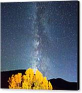 Milky Way October Sky Canvas Print by James BO  Insogna