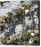 Minerals 4 Canvas Print by T C Brown