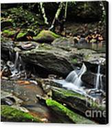 Mini Waterfalls Canvas Print by Kaye Menner