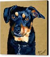 Miniature Pinscher Dog Painting Canvas Print by Alice Leggett