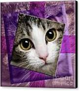 Miss Tilly The Gift 4 Canvas Print