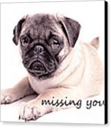 Missing You... Canvas Print by Edward Fielding