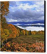 Misty Day In The Cairngorms II Canvas Print