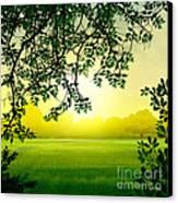 Misty Morning Canvas Print by Bedros Awak