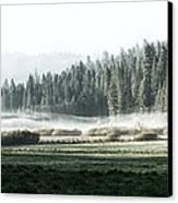 Misty Morning In Yosemite Canvas Print