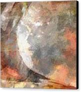 Molding Color Forms Canvas Print by Judy Paleologos