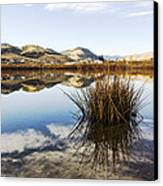 Montana Reflections Canvas Print by Dana Moyer