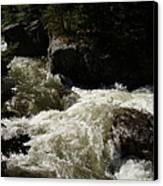 Montana River Rapids Canvas Print by Yvette Pichette