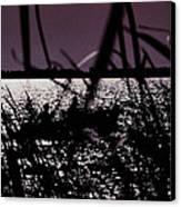 Moonlight Fisherman Canvas Print by Christy Usilton