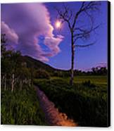 Moonlight Meadow Canvas Print by Chad Dutson