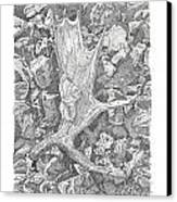 Moose Antler Shed Canvas Print by Kenneth or Susan Posselt