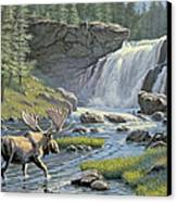 Moose Falls Canvas Print by Paul Krapf