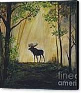 Moose Magnificent Canvas Print