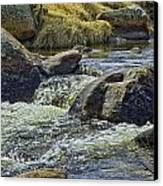 Moraine Park Canvas Print by Tom Wilbert