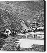 Mormon Emigrant Conestoga Caravan 1879 - To Utah Canvas Print
