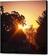 Morning Glare Canvas Print
