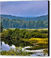 Morning Mist On The Moose River Canvas Print by David Patterson