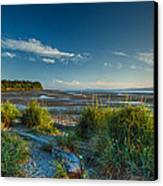 Morning On The Beach Canvas Print by Randy Hall
