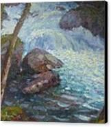 Morraine Ck. Fiordland Nz. Canvas Print