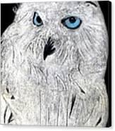 Snow Owl Canvas Print by Tyler Schmeling