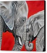 Mothers Love Canvas Print by Ilse Kleyn