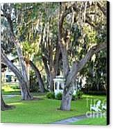 Mount Dora Canvas Print by Carey Chen