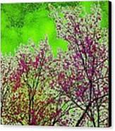 Mount Fuji In Bloom Canvas Print