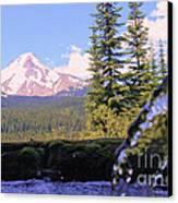 Mount Hood From Buzzard Point Canvas Print by Cari Gesch