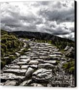 Mount Snowdon Path Canvas Print by Jane Rix