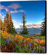 Mountain Rainier  Sunset Canvas Print by Emmanuel Panagiotakis