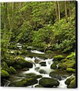 Mountain Rapids Canvas Print by Andrew Soundarajan