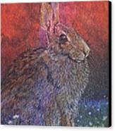 Munching On Clover Canvas Print by Sari Sauls