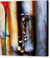 Mushroom On Bamboo 2 Canvas Print