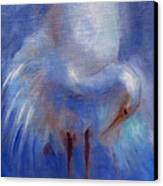 My Fair Egret Canvas Print by Susan Hanlon