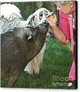 My Pig And Dog Friends Canvas Print by Artist and Photographer Laura Wrede