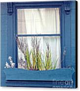 My San Francisco Window Garden Canvas Print by Artist and Photographer Laura Wrede