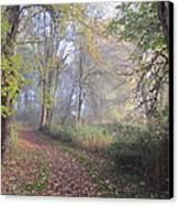 Mystical Path Canvas Print