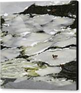 Nasty Weather - Featured 3 Canvas Print