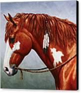 Native American Pinto Horse Canvas Print