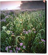 Native Prairie Sunrise Canvas Print by Ray Mathis