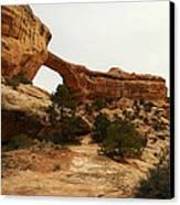 Natural Bridge Southern Utah Canvas Print by Jeff Swan