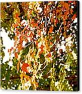 Nature In The City Canvas Print by Jocelyne Choquette