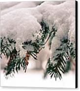 Nature's Art Work Canvas Print by Michelle and John Ressler