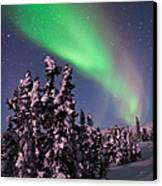 Nature's Canvas In The Northern Sky Canvas Print by Mike Berenson