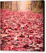 Nature's Red Carpet Revisited Canvas Print by Edward Fielding