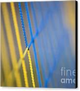 Network Canvas Print by Maurizio Bacciarini