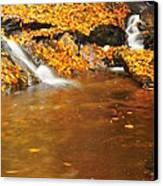 New Hampshire Stream Canvas Print by Catherine Reusch Daley